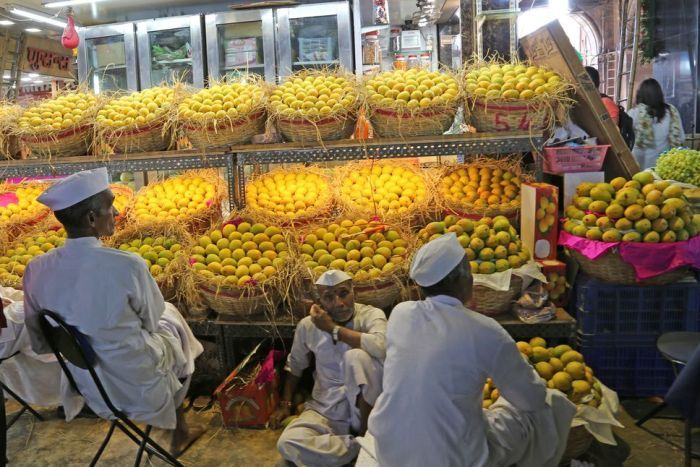 India set to export mangoes to Australia for the first time