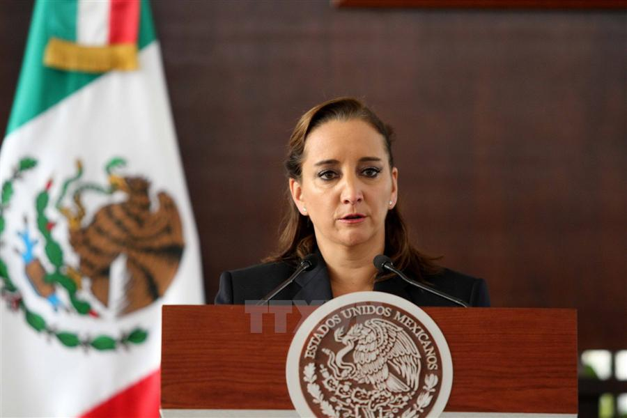 Mexico opposes India's UNSC bid